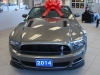 2014 Ford Mustang Convertible GT/CALIFORNIA SPECIAL