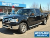 2008 Ford F-150 SuperCrew XLT