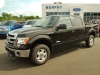 2014 Ford F-150 XLT SuperCrew For Sale Near Petawawa, Ontario