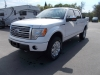 2010 Ford F-150 Platinum Edition 4x4