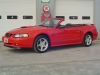 2003 Ford Mustang Convertible GT w/ ONLY 52,000 KM's For Sale Near Peterborough, Ontario