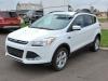 2015 Ford Escape SE For Sale Near Pembroke, Ontario