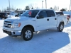 2014 Ford F-150 XLT For Sale Near Shawville, Quebec