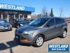 2014 Ford Escape For Sale Near Petawawa, Ontario