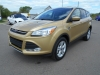 2015 Ford Escape SE For Sale Near Petawawa, Ontario
