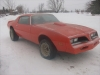 1977 Pontiac Firebird Trans Am For Sale