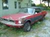 1968 Ford Mustang Convertible For Sale in Yarker, ON