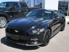 2016 Ford Mustang GT For Sale Near Eganville, Ontario