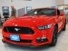 2017 Ford Mustang GT For Sale Near Eganville, Ontario