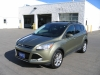 2013 Ford Escape SEL EcoBoost