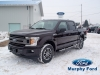 2018 Ford F-150 FX4 Super Crew Off Road 4X4