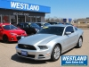 2014 Ford Mustang For Sale in Pembroke, ON