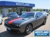 2014 Dodge Challenger For Sale in Pembroke, ON