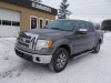 2011 Ford F-150 Lariat SuperCrew 4X4 For Sale in Eganville, ON