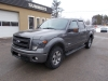 2013 Ford E-150 FX4 Super Crew 4X4 For Sale Near Barrys Bay, Ontario
