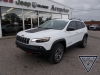 2020 Jeep Cherokee Trailhawk 4X4 For Sale in Arnprior, ON