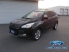 2014 Ford Escape SEL AWD For Sale in Bancroft, ON