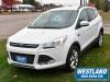 2015 Ford Escape SE For Sale Near Chapeau, Quebec
