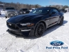 2021 Ford Mustang Convertible GT Premium For Sale in Bancroft, ON
