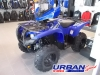 2014 Yamaha Grizzly Limited Edition 550