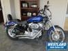 2009 Harley Davidson XL883 custom